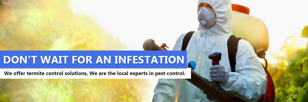 Trusted Pest Control in Woburn MA